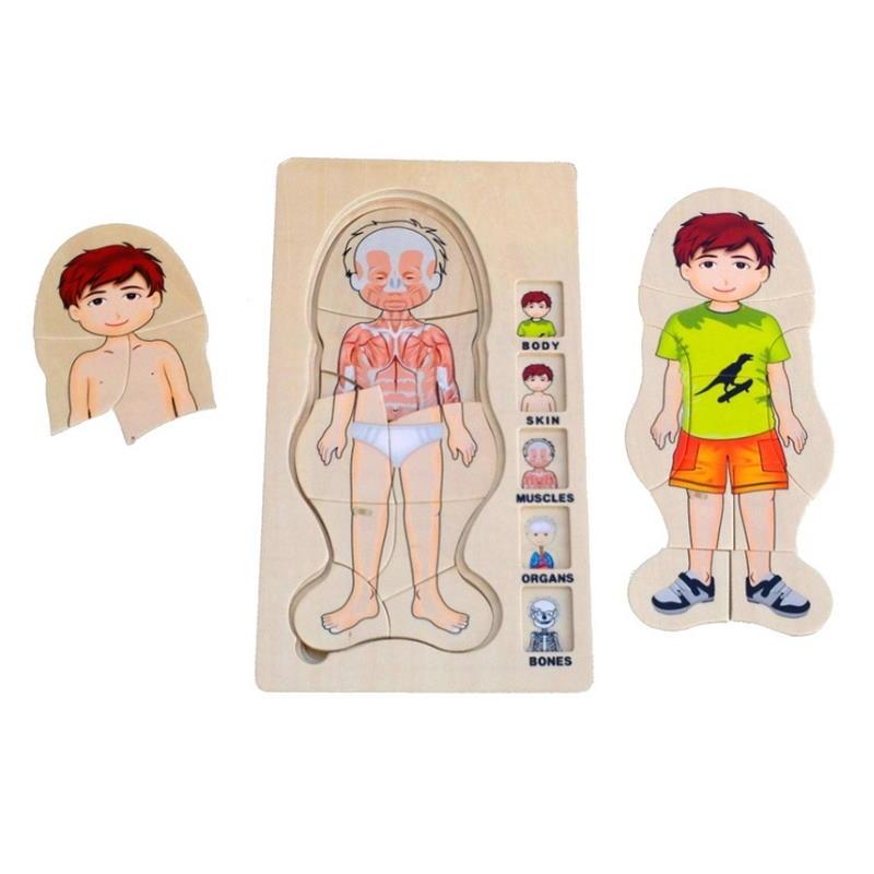 Mehrschichtiges Puzzle Jungen Körper